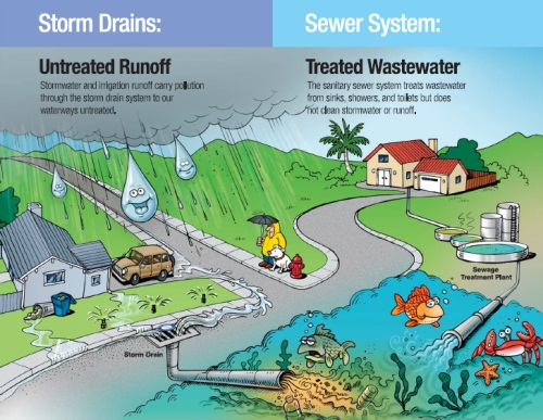 Storm Water Management | Galveston County Health District Stormwater Runoff Diagram