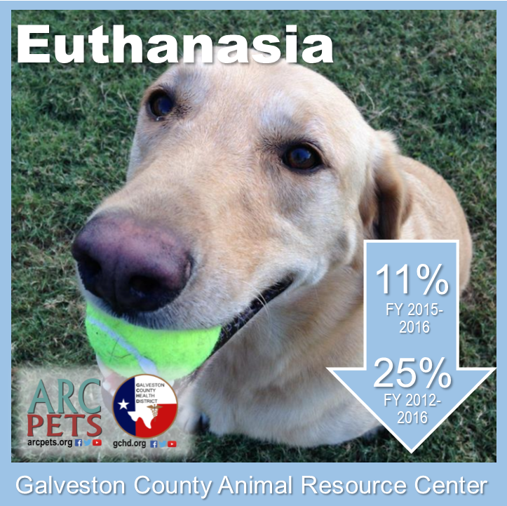 "Graphic with dog that reads ""euthanasia down 11-percent 2015 to 2016"""