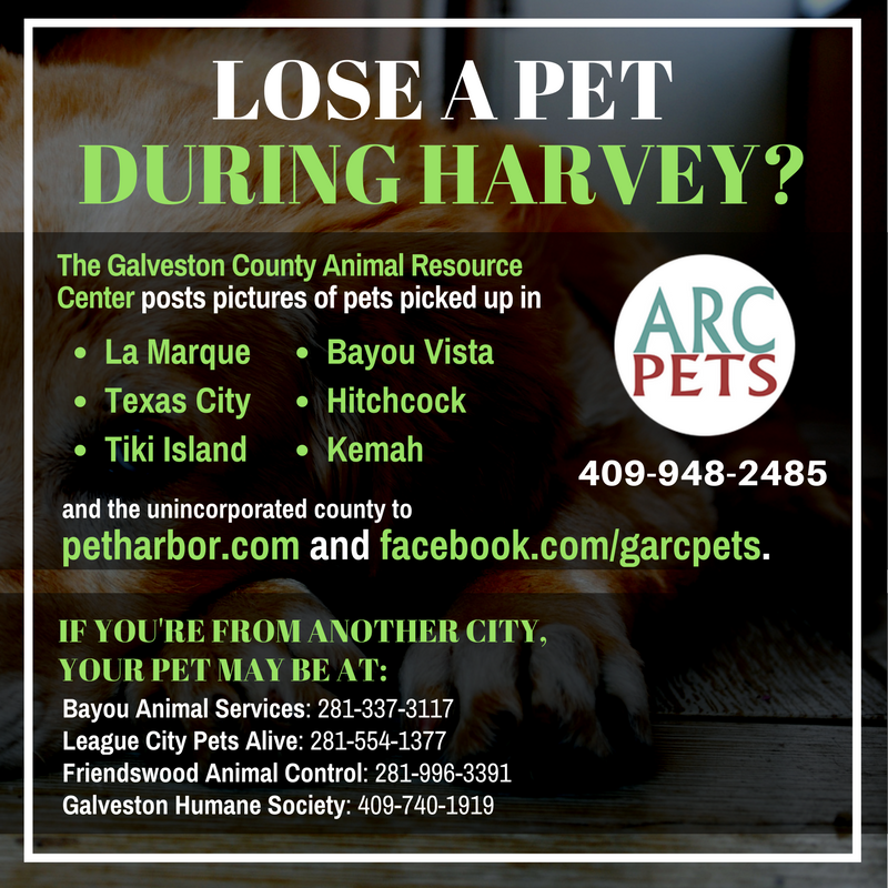 "Graphic reading ""We're posting Harvey pets on petharbor.com and our facebook page."""